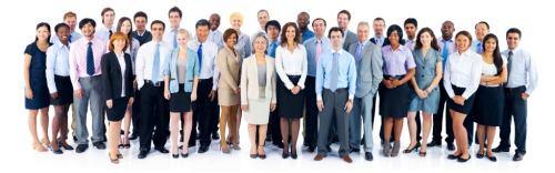 Employee Survey Vendor