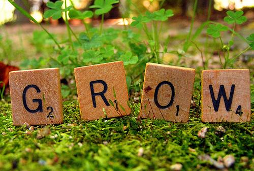 Grow-Blog
